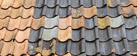 dakpannen reinigen Zoetermeer