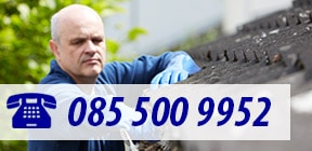 contact dakspecialist Hoek van Holland