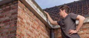 repareren schuine daken