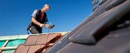 soorten dakbedekking Den Bosch